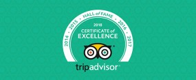 TripAdvisor 2018 'Hall of Frame' - feature